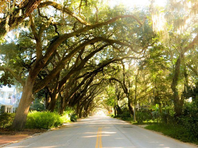 Magnolia Avenue in St. Augustine