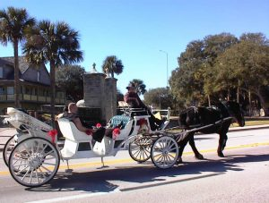 st george carriage tour