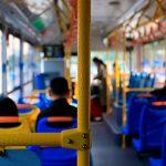 trolley tour tourism tourists bus st. augustine public transportation