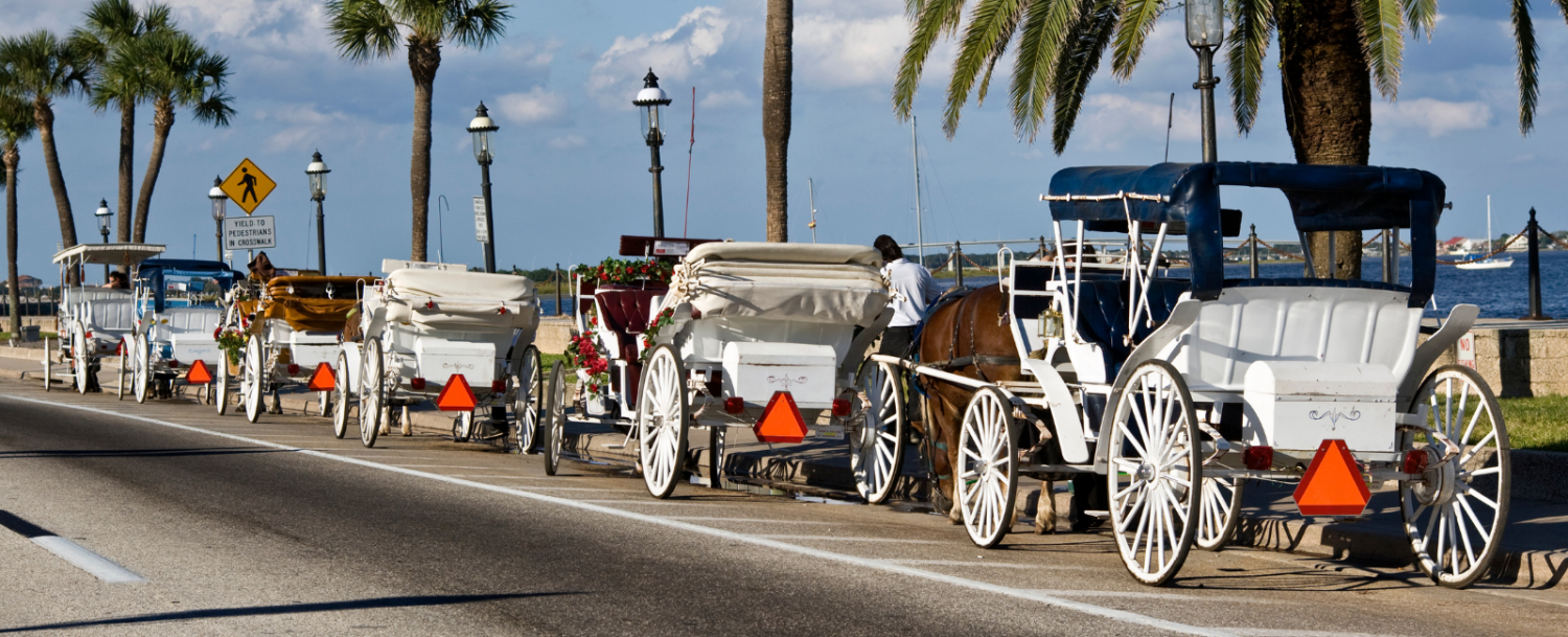 Horse carriage tours in St. Augustine